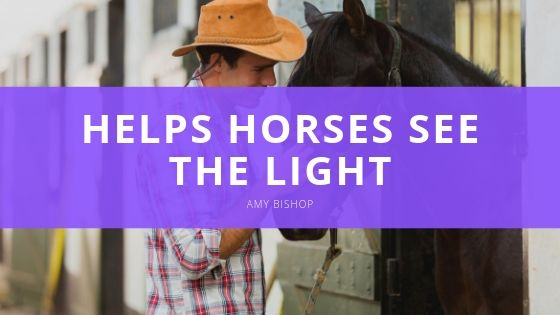 Amy Bishop, Optometrist in Texas, Helps Horses See the Light, Find Good Homes