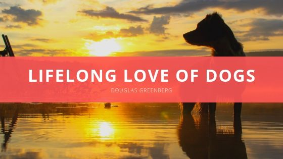 Douglas Greenberg Lifelong Love of Dogs