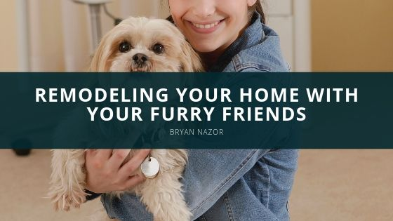 Bryan Nazor Remodeling Your Home With Your Furry Friends