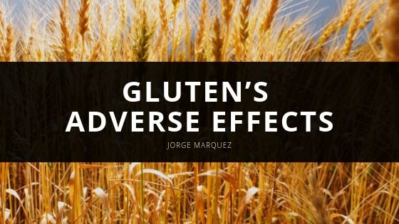 Jorge Marquez Gluten's Adverse Effects
