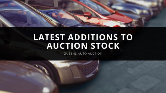 Queens Auto Auction