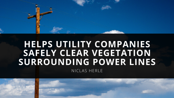 Niclas Herle Aerial Innovator Helps Utility Companies Safely Clear Vegetation Surrounding Power Lines