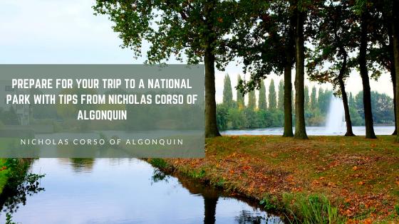 Nicholas Corso of Algonquin